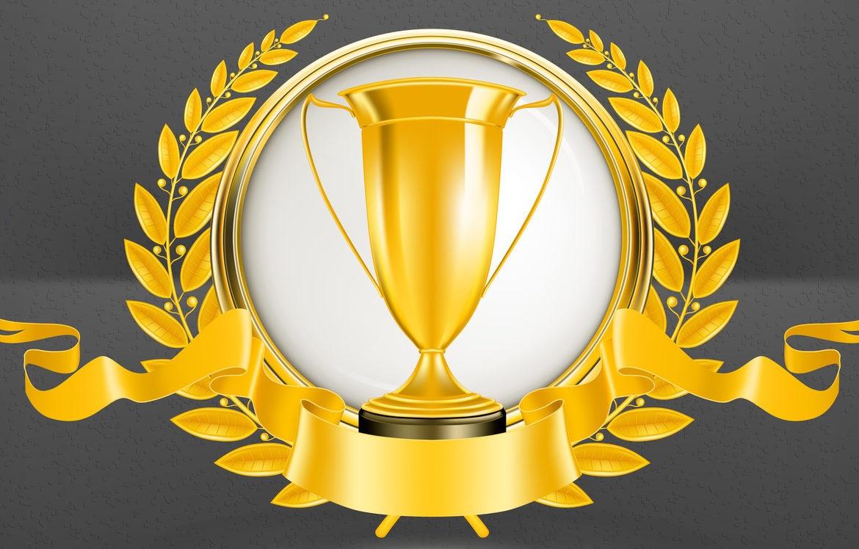Customer scout seo 5 star reviews awardwinningservice